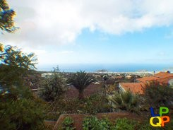 object 107  La Palma / Property with 4 houses / Country home / Casa Almendra