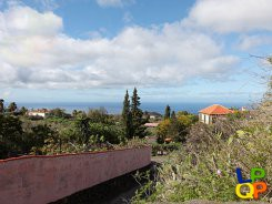 object 321  La Palma   / Property with 4 houses / Holiday home / El Pueblito Casa 1