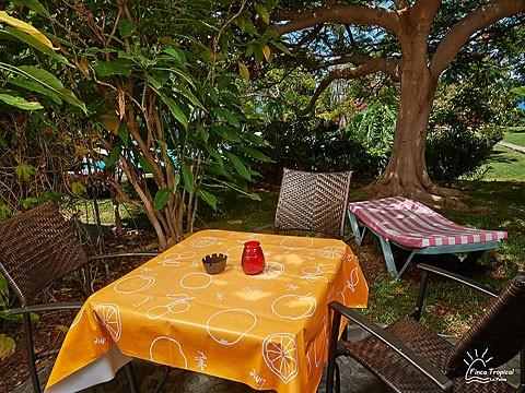 La Palma Ferienwohnung Casa Amarilla 4 Mit Pool In