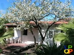 object 426  La Palma / Apartment complex with pool / Holiday home / Casa Fincavera 1