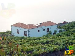 object 478  La Palma / House with 2 apartments / Holiday home / Casitas las Viñas B