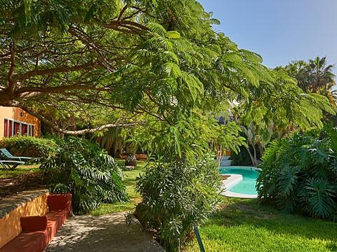 La Palma Ferienwohnung Casa Amarilla 2 Mit Pool In
